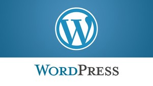 Post instalación de wordpress